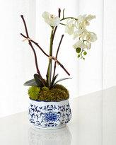 John-Richard Collection Dancing Orchid Faux Floral