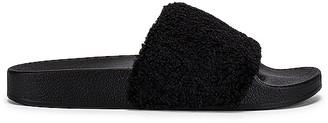 Steve Madden Shear Sandals