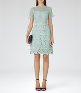 Reiss Heather Lace Dress
