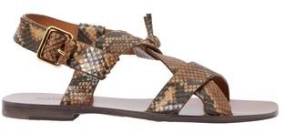 Zimmermann Buckle sandals