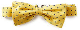 Brooks Brothers Dotted Bow Tie