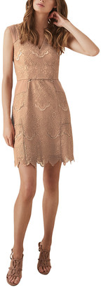 Reiss Gemina Lace Dress