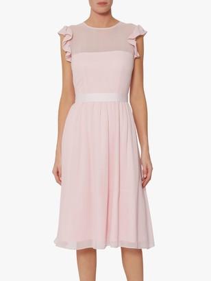 Gina Bacconi Pomona Fit and Flare Dress