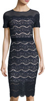 Jax Short-Sleeve Lace Midi Dress, Navy