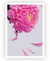 Design Mondo Pink Petals Art Print, A3