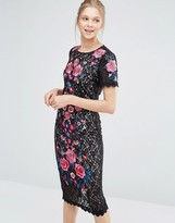Oasis Embroidered Lace Pencil Dress
