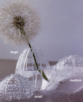 Glass Sea Urchin Vases