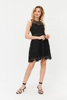 Coast Contrast Lace Fit & Flare Dress