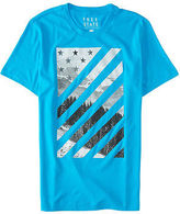 Aeropostale Mens Free State Flag Mountains Graphic T Shirt