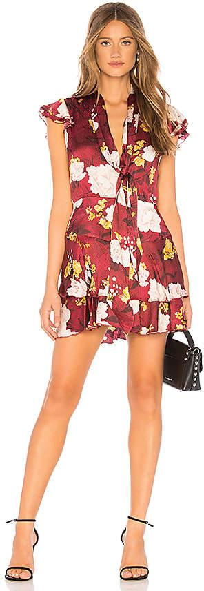 Alice + Olivia Lashay Dress