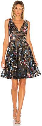 Bronx and Banco Paradise Flared Dress