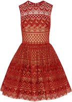 Elie Saab Cotton-blend Guipure Lace Mini Dress - Claret