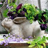 Bunny Plant Holder