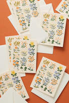 Rifle Paper Co. Wildwood Thank You Cards, Set of 8