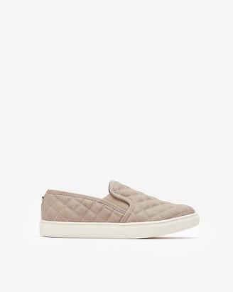 Express Steve Madden Ecentrcq Slip-On Sneakers