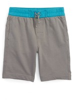 Tea Collection Toddler Boy's Boardies Surf Shorts