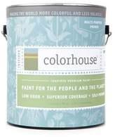 Apt2B Paint Primer by Colorhouse