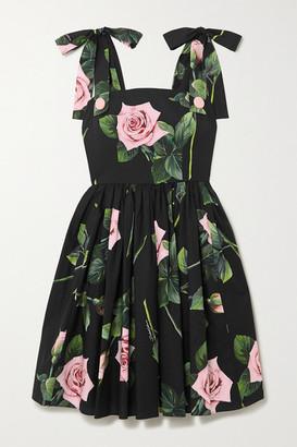 Dolce & Gabbana Tie-detailed Floral-print Cotton-poplin Dress - Black