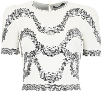 Alexander McQueen Embroidered Cropped Top
