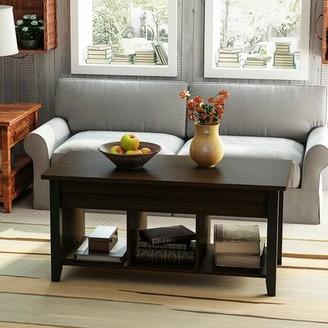 Red Barrel Studio Ambrozy Lift Top Coffee Table with Storage Color: Black