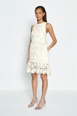 Coast Sleeveless Lace Peplum Hem Dress