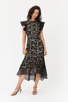 Coast Floral Lace Frill Sleeve Dress
