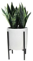 Threshold Artificial Plant in Stand Large