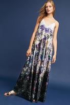 Nicole Miller Chelsea Maxi Dress