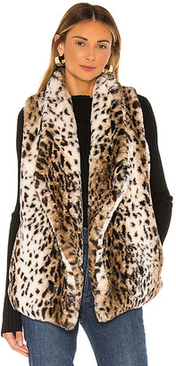 BB Dakota Jack By Purr Usual Faux Leopard Vest