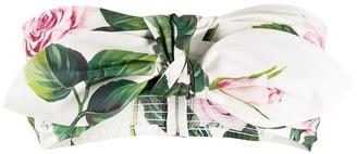 Dolce & Gabbana Tropical Rose print bandeau top
