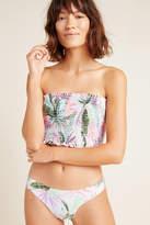 PQ Swim Ivy Ruched Bikini Bikini Bikini Bottom