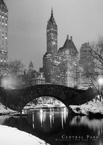 Poster Revolution NYC - Central Park, 1961 Photo Print Poster - 24x36