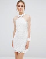 Endless Rose Sheer Lace Shirt Dress