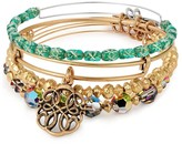Alex and Ani Starlight Set of 4 | Online Exclusive