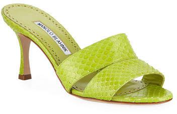 Manolo Blahnik Iacopo Snakeskin Slide Sandals