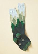 Sock it to Me, Inc. Fir the Fun of It Socks