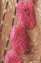 Tory Burch 'Pompom Rattan' Print Scarf Womens Gold One Size One Size