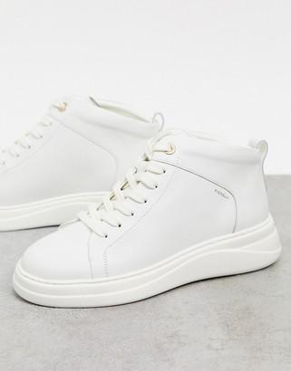 Fiorelli pippa leather high top sneakers in cream
