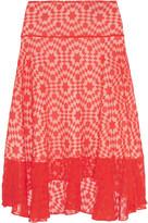 Preen by Thornton Bregazzi Amila embroidered cotton-voile skirt