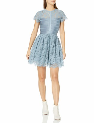 French Connection Women's Shana Spotlight Lace Tulle Short Sleeve Dress
