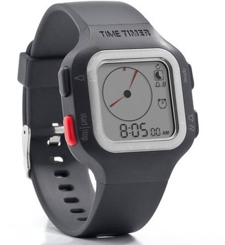 Time Timer The Watch PLUS, Large, Gray