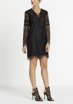 Buffalo David Bitton Lace-A-Lot