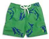Ralph Lauren Baby's Shark-Print Swim Trunks