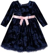 Baby Girl Blueberi Boulevard Floral Velvet Dress
