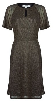 Dorothy Perkins Womens Tall Gold Mesh Keyhole Dress