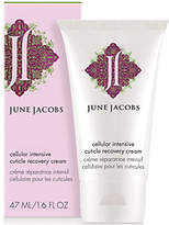 June Jacobs Cellular Intensive Cuticle RecoveryCream, 1.6 oz