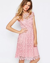 Paul & Joe Paul and Joe Sister Floral Lace Midi Dress in Pink