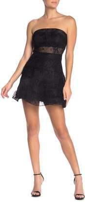 Jump Lace Strapless Fit & Flare Mini Dress