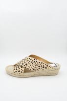 Dolce Vita Leopard Slide Sandal