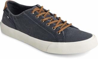 Sperry mens Striper Ii Ltt Sneaker Beige 7.5 US